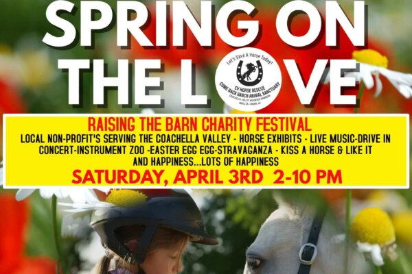 SPRING ON THE LOVE OPEN-AIR CHARITY FESTIVAL